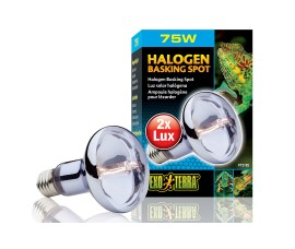 Лампа галогенная для баскинга - Exo-Terra Halogen Basking Spot - 75 Вт - арт.: PT2182