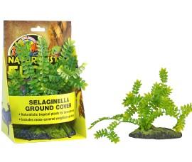 Растение иск. - Zoo Med Selaginella Ground Cover - Naturalistic Flora - арт.: BU-43E