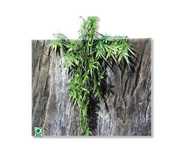 Растение иск. - JBL TerraPlanta Madag. Bambus - size L - 65 см - арт.: 6803900