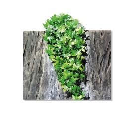 Растение иск. - JBL TerraPlanta Congo Efeu - size M - 50 см - арт.: 6801100