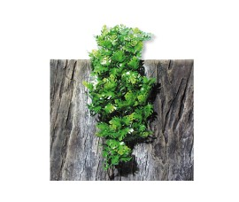 Растение иск. - JBL TerraPlanta Amazonas Philo - size M - 50 см - арт.: 6802600