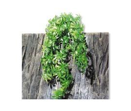 Растение иск. - JBL TerraPlanta Canabis - size M - 50 см - арт.: 6802900
