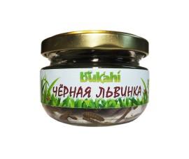 Корм консервированный Bukahi - личинки мухи черной львинки / 40 г - арт.: BU-192006